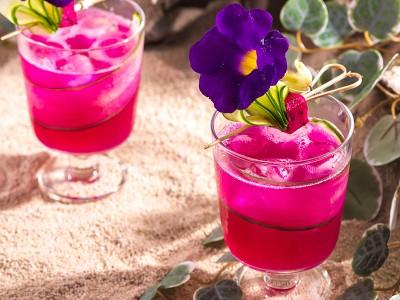 食譜-沙漠之果(火龍果檸檬氣泡飲)
