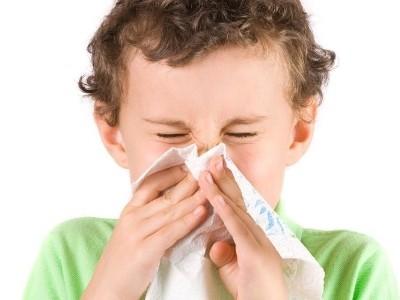 食譜-夏末來臨,濕氣重,如何改善過敏性鼻炎的養生食療